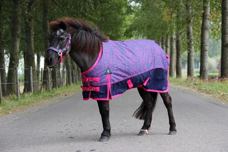 DKR Sports Mini Winterdecke Deluxe 150grs für pony's
